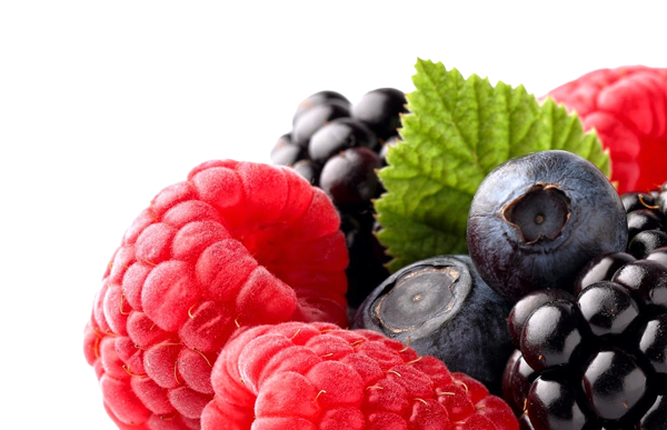 nutricional-animal-nutricional-vegetal-medioambiente-2